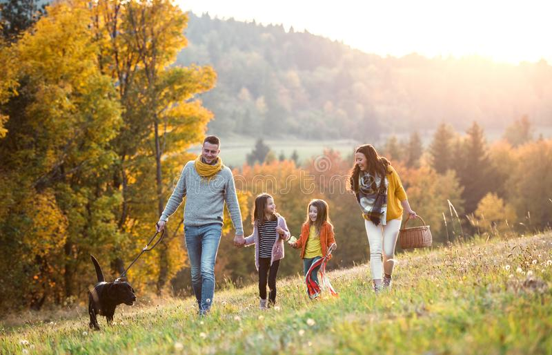 A young family with two small children and a dog on a walk in autumn nature. stock photography
