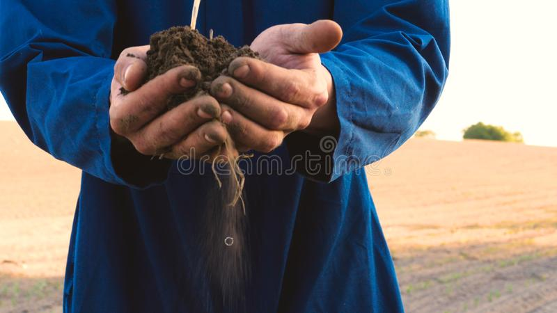 A young farmer in a blue robe is planting a small green sprout, on a field in nature. Concept: clean air, bio, agriculture, freedo. M, food, new life stock image