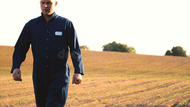 A young farmer in a blue robe walks the field looking at planted plants. Concept: clean air, bio, agriculture.  stock photo