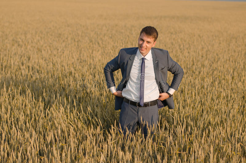 Young farmer businessman in a wheat field stock photography