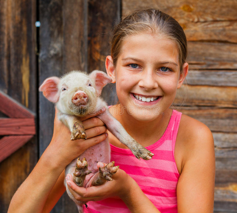 Young farmer. Happy girl holding a white piglet in her hands royalty free stock images