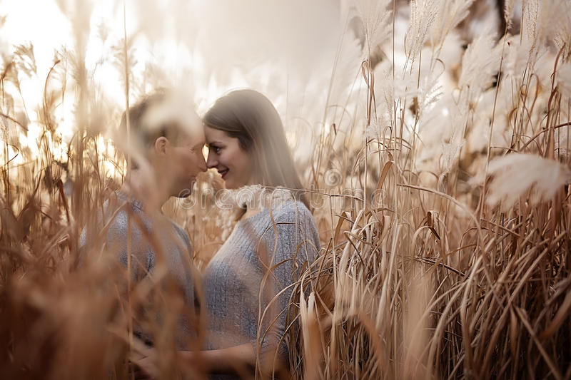 Young fashion beautiful loving casual style couple on floral field in autumnal park royalty free stock images