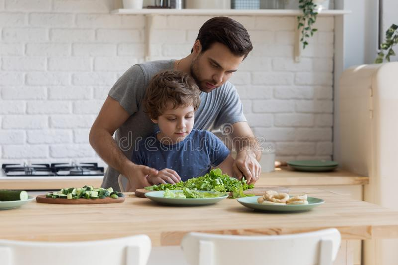 Young father teaching little focused school kid son slicing vegetables. stock images