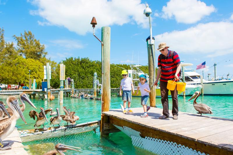 Young father and two little kid boys feeding fishes and big brown pelicans in port of Islamorada, Florida Keys. Man and. His sons, preschool children having fun stock photo
