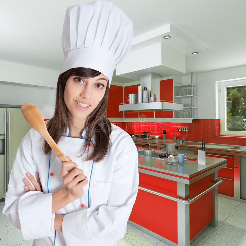 Download Young female chef stock illustration. Image of home, cheerful - 22426549