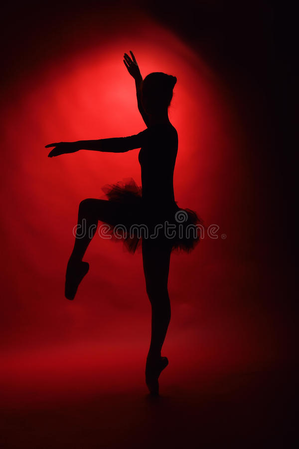 Young female classical ballet dancer. Beautiful young female classical ballet dancer on pointe shoes royalty free stock image