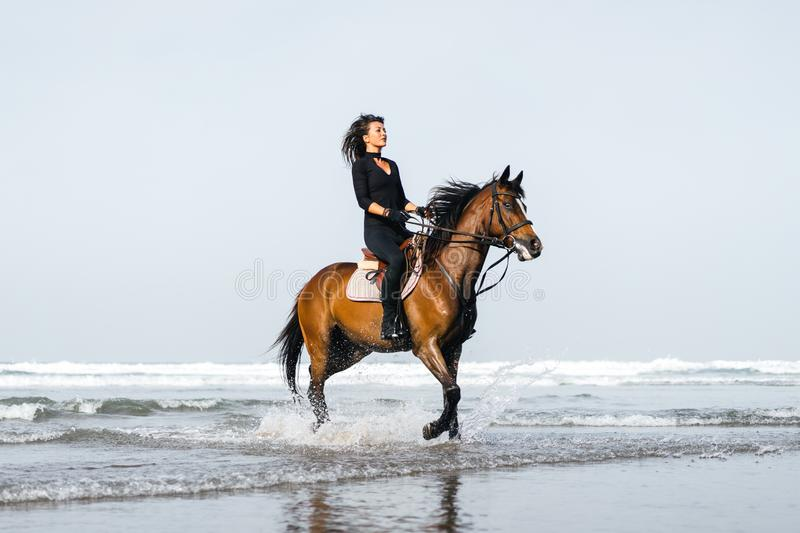 young female equestrian riding horse in wavy water royalty free stock photography