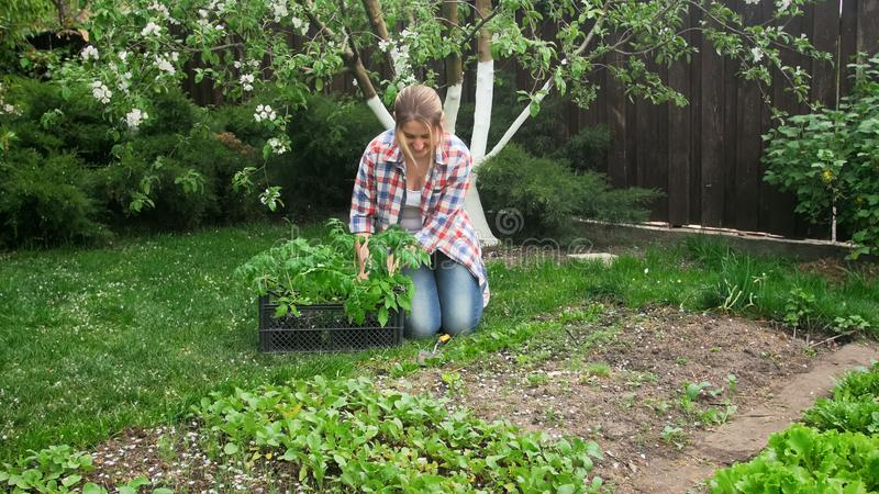 Young female gardener sitting at garden and planting seedlings royalty free stock photos