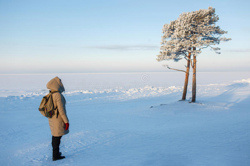 Young female hiker with backpack enjoying view to frozen sea beautiful pine tree. Beloe , Russia. Young female hiker with backpack enjoying view to frozen sea royalty free stock photography