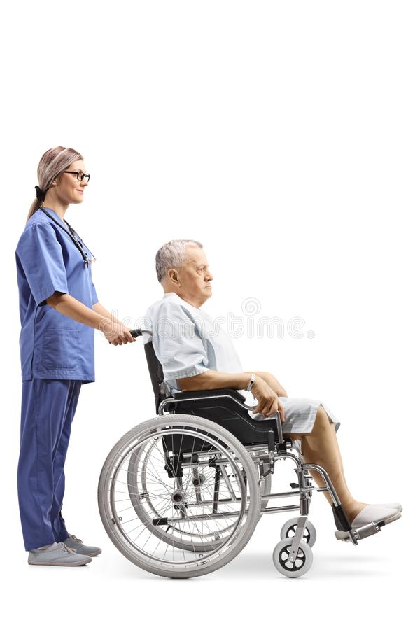 Young female nurse pushing an elderly male patient in a wheelchair royalty free stock photos