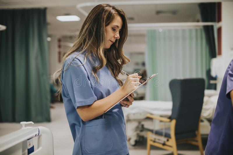 Young female nurse taking notes royalty free stock images