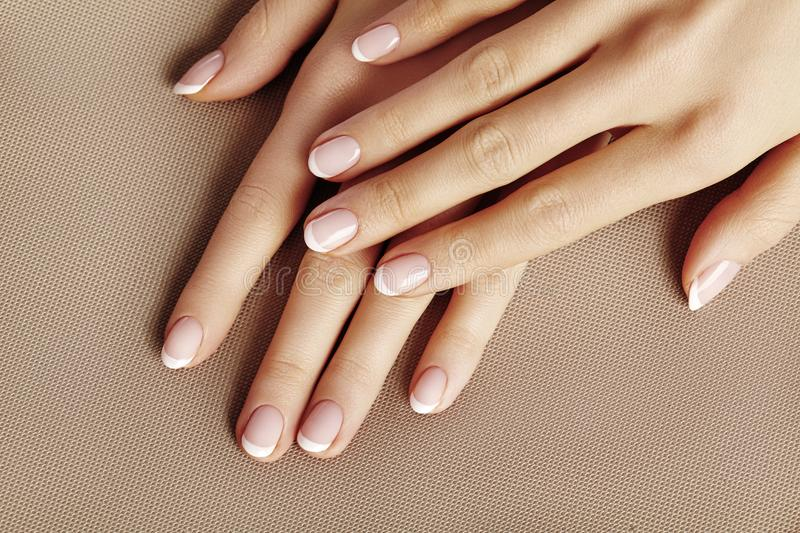Young Female Palm. Beautiful Glamour Manicure. French Style. Nail polish. Care about Hands and Nails, clean Skin royalty free stock images