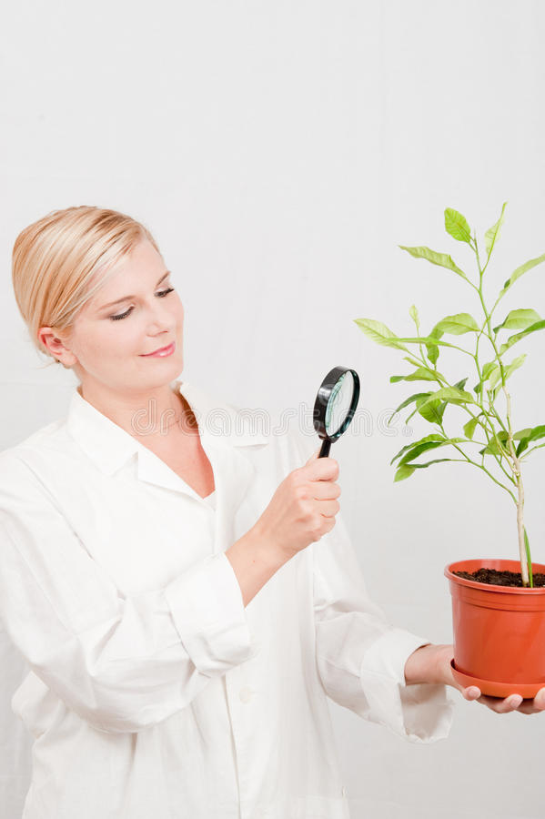 Free Young Female Scientist Botanic With Green Plant Royalty Free Stock Photos - 11776048