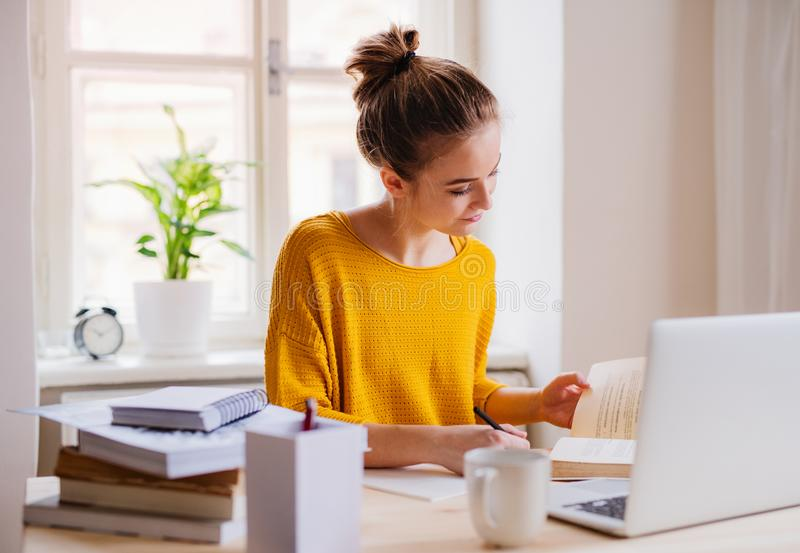 A young female student sitting at the table, using laptop when studying. A young happy college female student sitting at the table at home, using laptop when royalty free stock photos