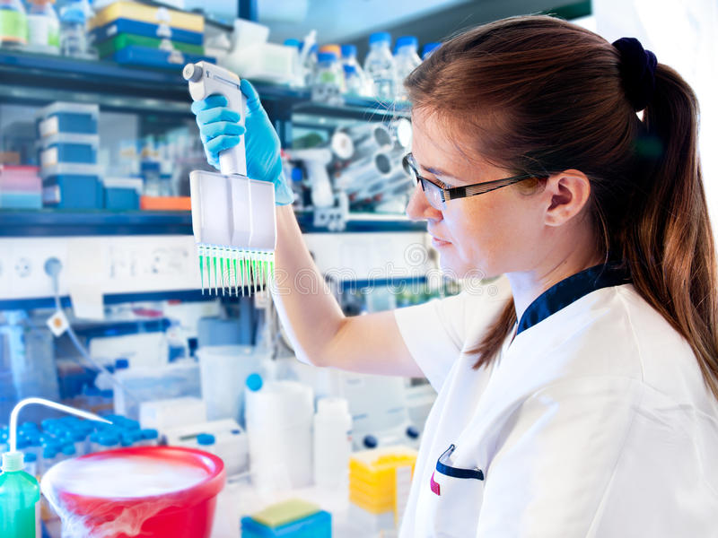 Molecular Biologist Works In The Lab Stock Photo - Image of biotech ...