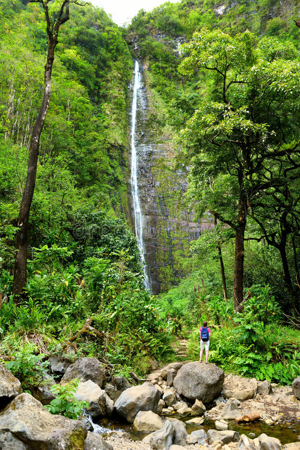 Young female tourist hiking to the famous Waimoku Falls at the head of the Pipiwai Trail, above Seven Sacred Pools on the Road to. Hana. Maui, Hawaii, USA royalty free stock image