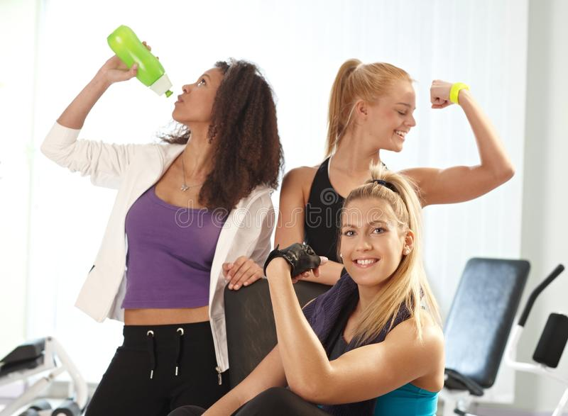 Download Young females at the gym stock image. Image of exercises - 26387107