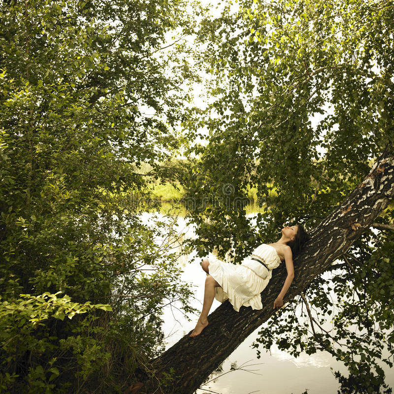 Free Young Fine Woman On Tree Royalty Free Stock Photo - 10226775