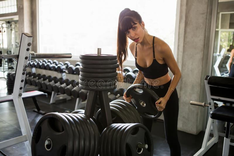 young fitness girl doing weight lifting with weight barbell plate in gym.woman in sportswear working out strengthen pumping up the royalty free stock image
