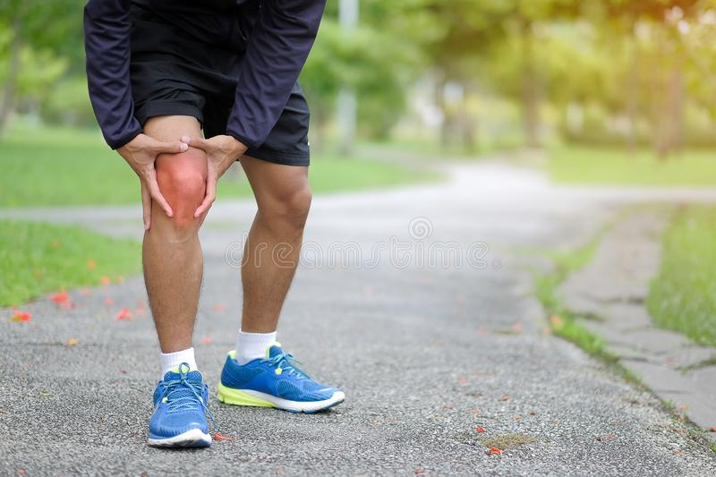 Young fitness man holding his sports leg injury, muscle painful stock image