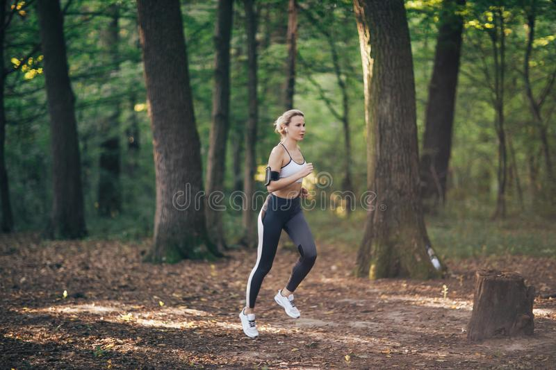 Young fitness sport woman running on the forest road in the morning royalty free stock photo