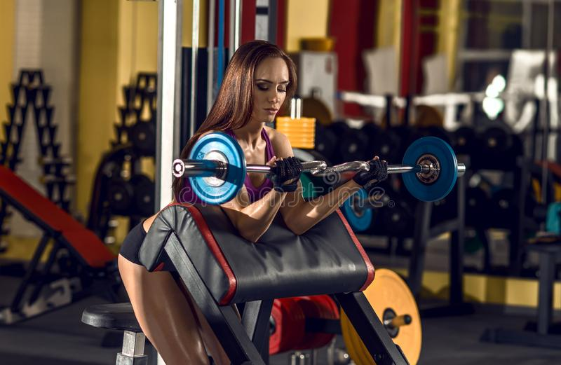 Fitness woman in gym. Young fitness woman in gym perform exercise with dumbbells, horizontal photo stock image