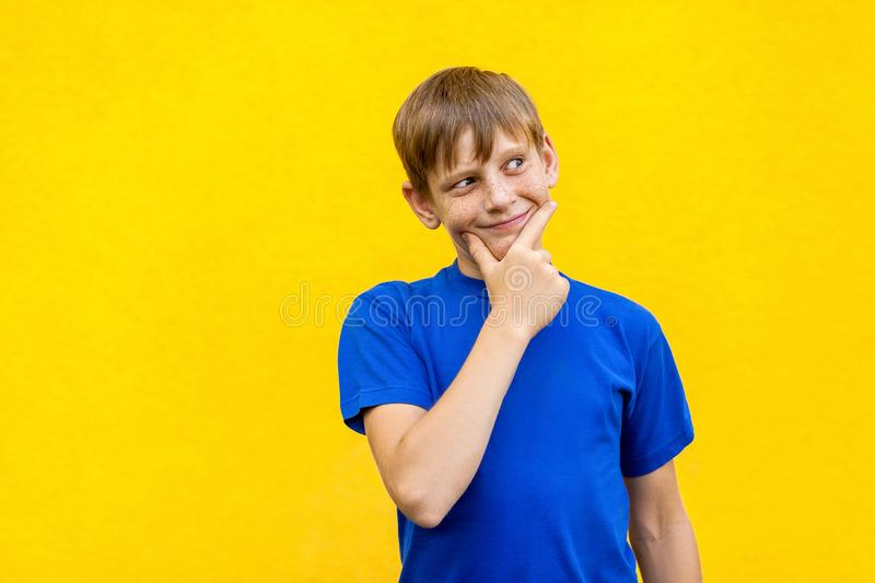 Young freckled boy conceived something bad. Isolated on yellow wall. Studio shot royalty free stock images