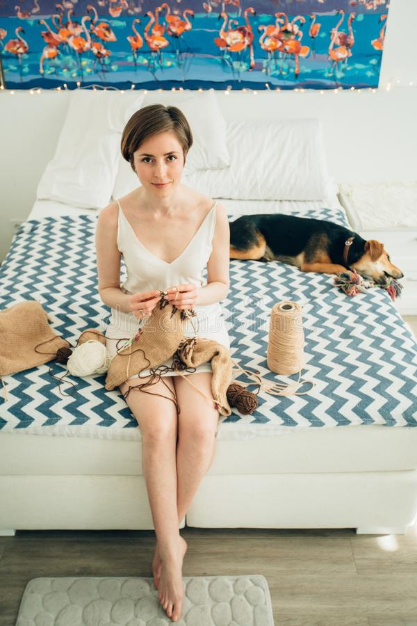 Young friendly girl craftwoman in nightdress looking at camera while knitting sweater on bed. Cute cur dog besides. Home, royalty free stock images