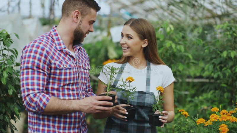 Young friendly woman florist talking to customer and giving him advice while working in garden center royalty free stock image