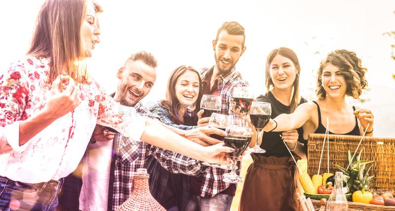 Young friends having fun toasting red wine at vineyard picnic experience- Happy people enjoying harvest time together at farm royalty free stock photos