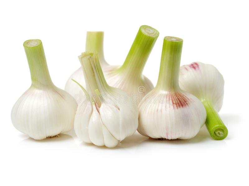 Young garlic. Isolated on white background stock photos