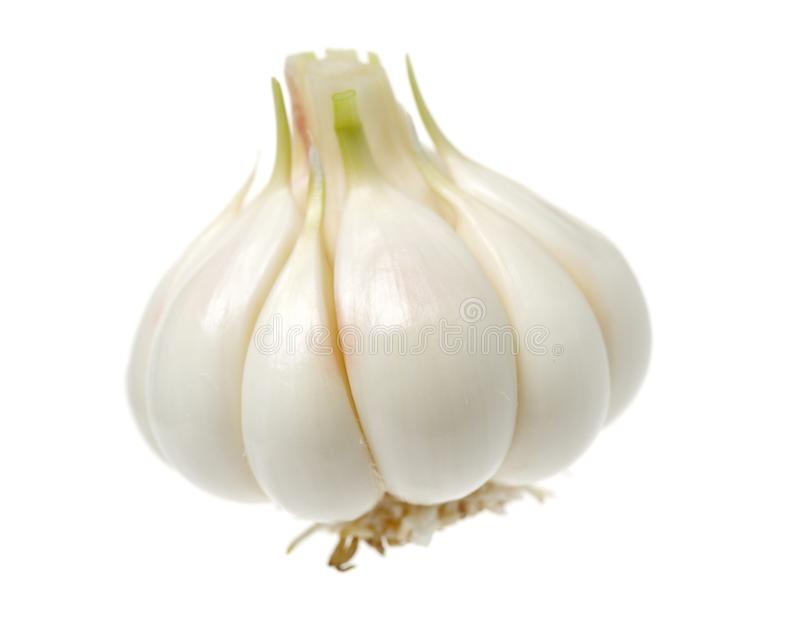 Young garlic. Isolated on white background stock photo
