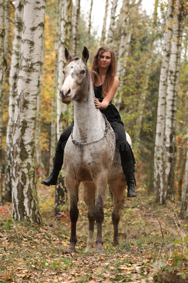 Young girl with appaloosa horse in autumn. Forest stock photography