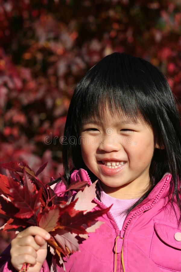 Download Young Girl Autumn stock image. Image of preschooler, chinese - 6936913