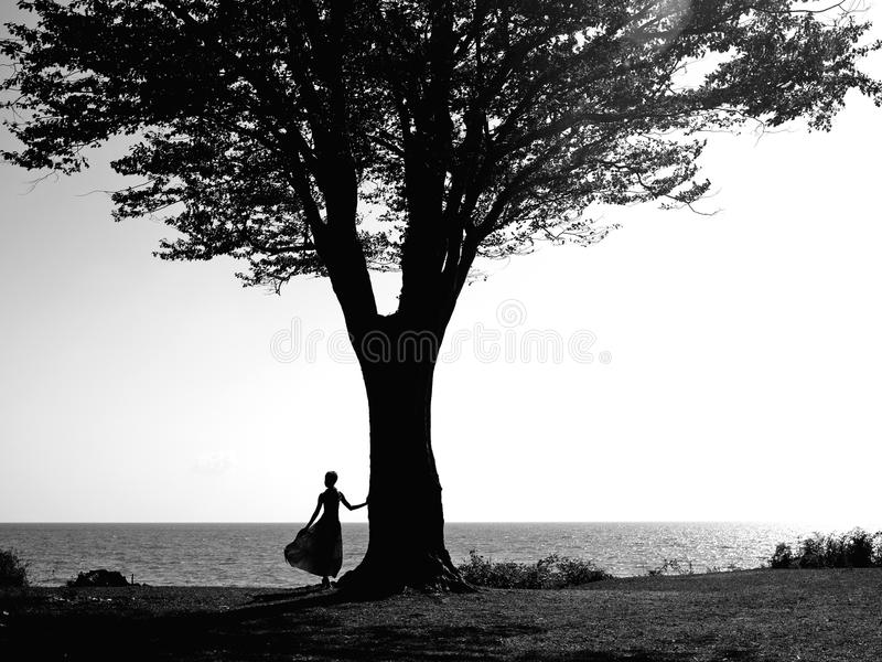 Young Girl With A Beautiful Tree Royalty Free Stock Photos