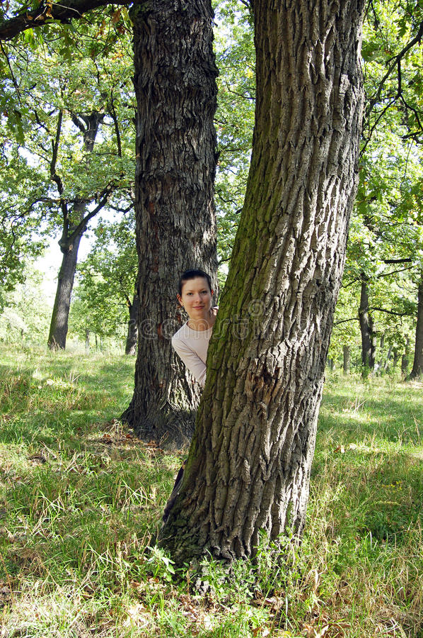 Young Girl Behind The Tree On Warm Summer Day Stock Photography