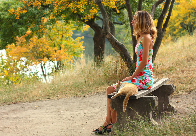 Download A Young Girl On A Bench And A Cat Stock Photo - Image: 18454634