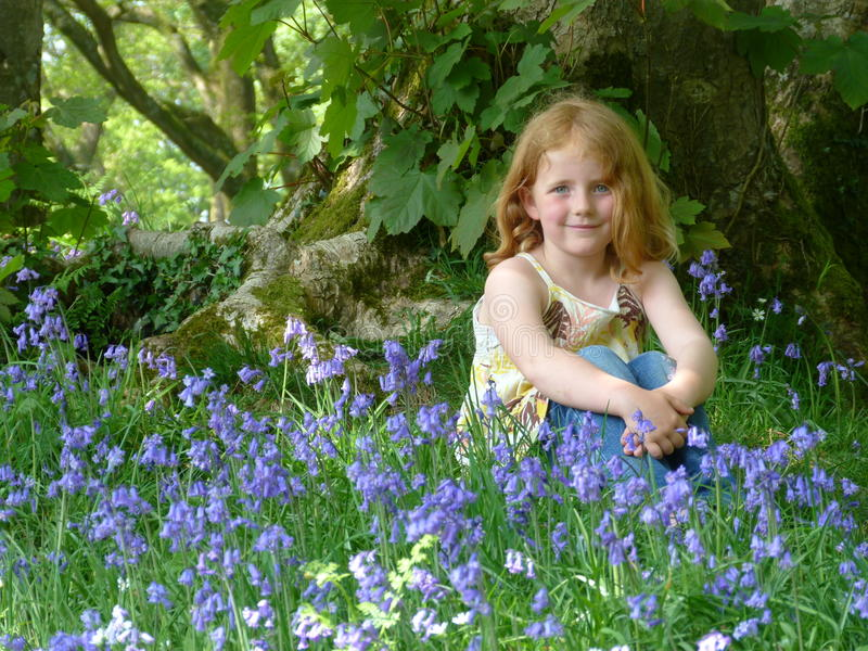Young girl in bluebell wood stock photography