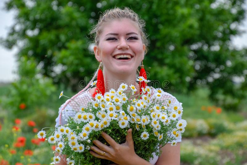 Young girl with a bouquet of daisies in field. Daisies on a poppy field royalty free stock image