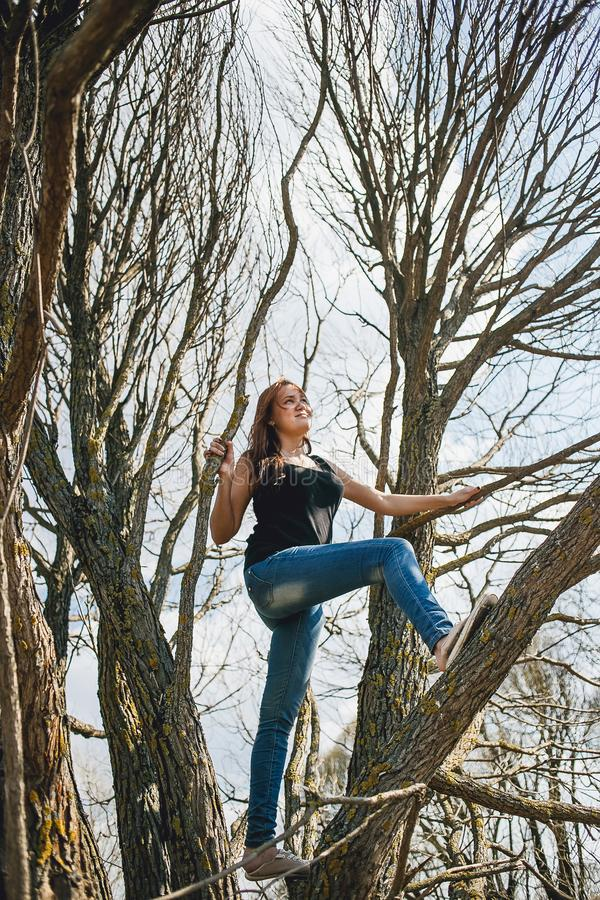 Young girl climbing a tree on a fine spring day royalty free stock images