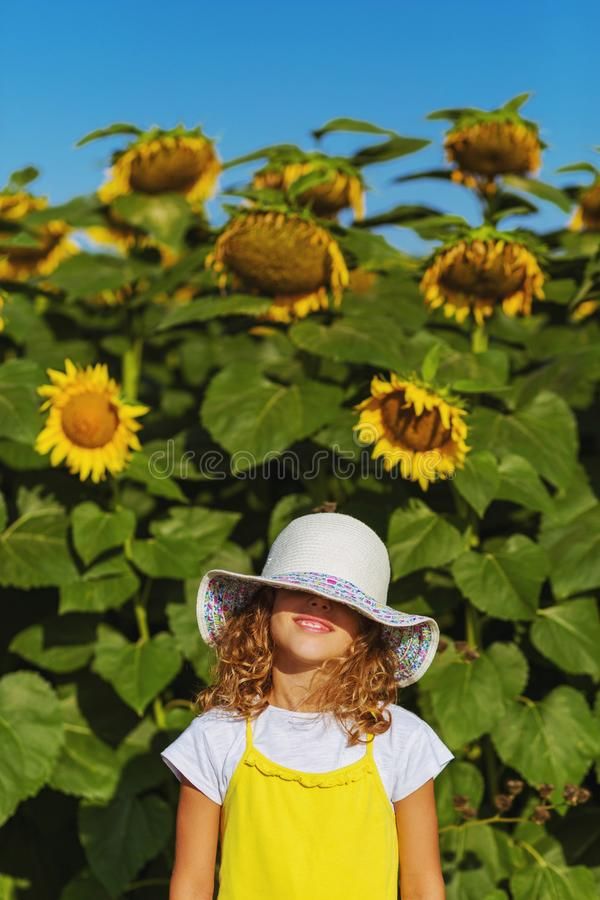 Sunshine girl with sunflowers royalty free stock photos