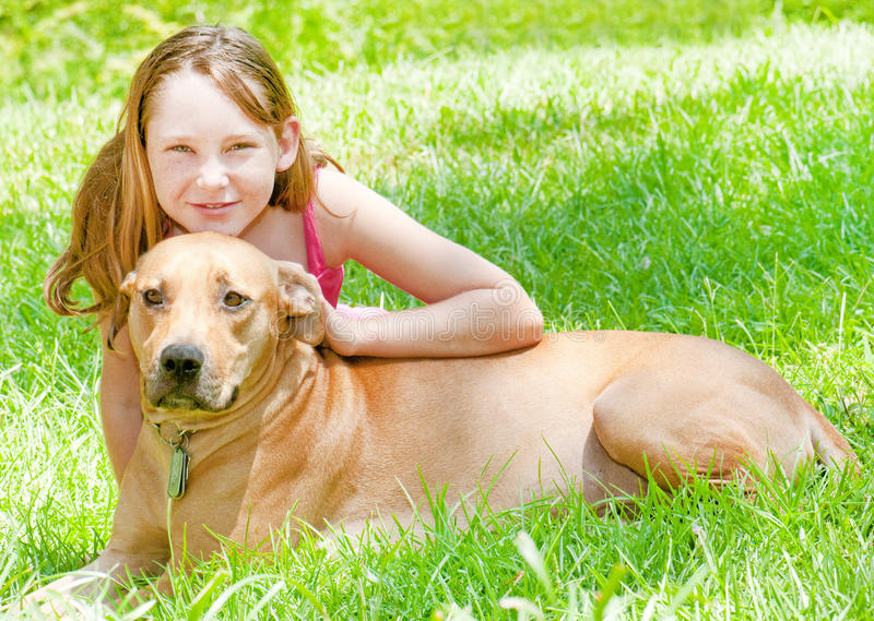 Young girl with dog royalty free stock image