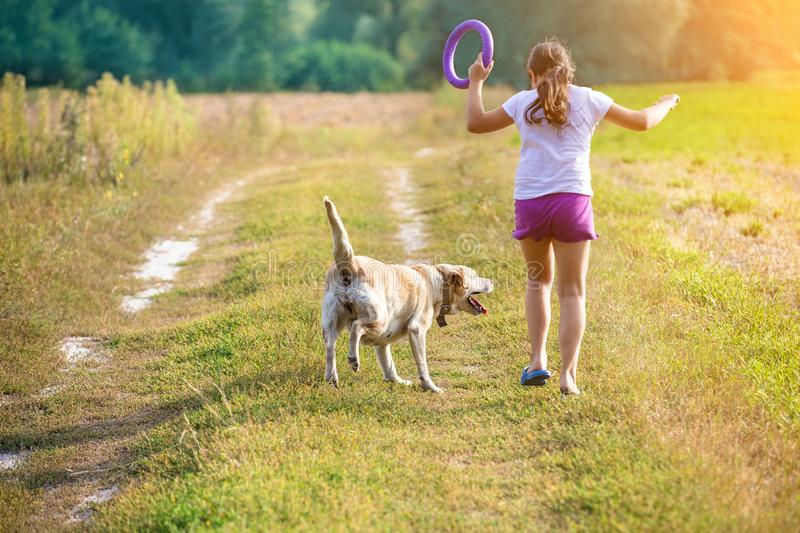 A young girl with a dog runs along a country road. In a field in summer. The girl holds in her hand a ring for training stock photos