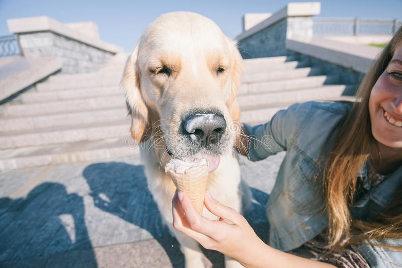 A young girl feeds her dog ice cream in a park on a hot summer day. royalty free stock photos