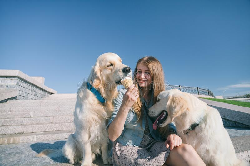 A young girl feeds her dogs ice cream in a park on a hot summer day. royalty free stock images