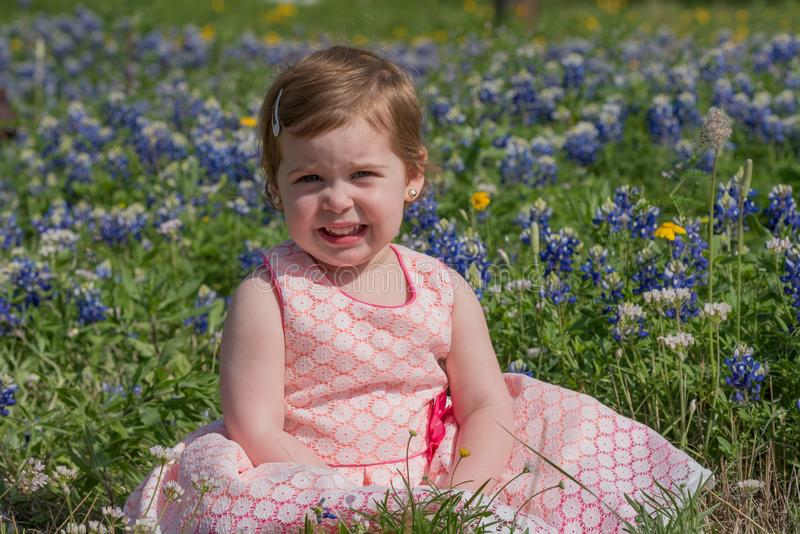Young Girl in Field of Blue Bonnet Flowers royalty free stock photos