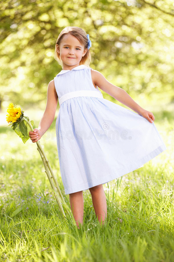 Download Young Girl In Field Holding Sunflower Stock Photo - Image: 26105868