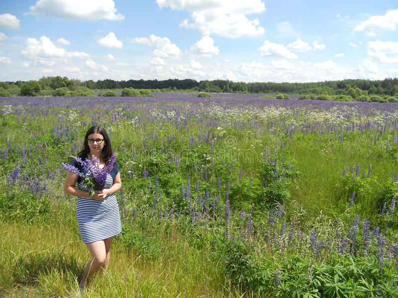Young girl in a field of lavender royalty free stock images