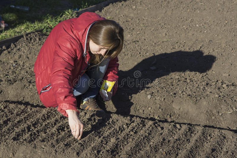 Young girl in the garden stock photography