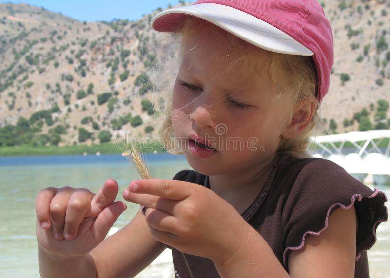 Beautiful blond little girl in a pink hat observing an ear of wheat. stock image